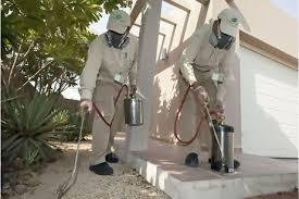 شركة رش مبيدات بالكامل مكة